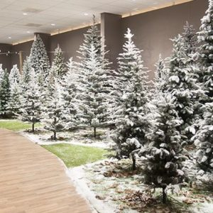 Artificial Christmas Trees (Un-Lit)