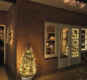 Indoor/Outdoor Xmas Tree Lights
