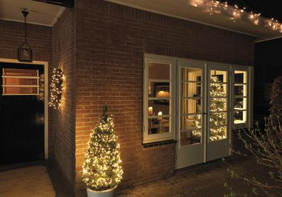 Indoor/Outdoor Xmas Tree Lights