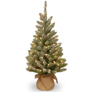 3ft Snowy Concolor Fir Pre-Lit Artificial Christmas Tree