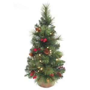 Christmas Trees For Sale Dublin Ireland
